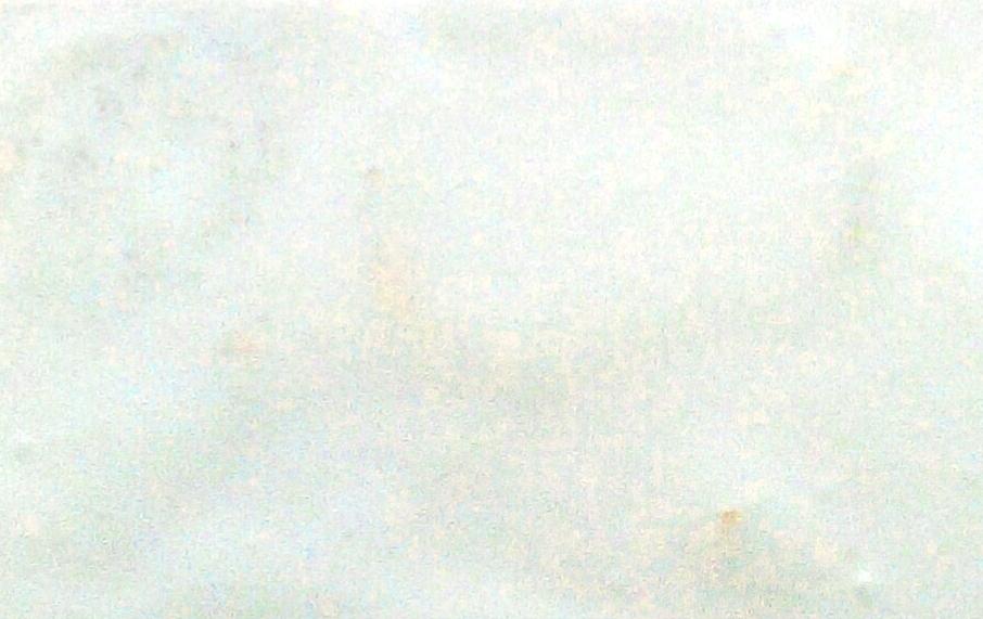 Venta pintura online: Pigmento Fluor Blanco